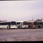 MCTS bus lineup, Fond du Lac garage